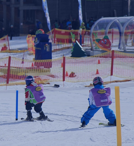 Full day skiing lessons in Kinderland