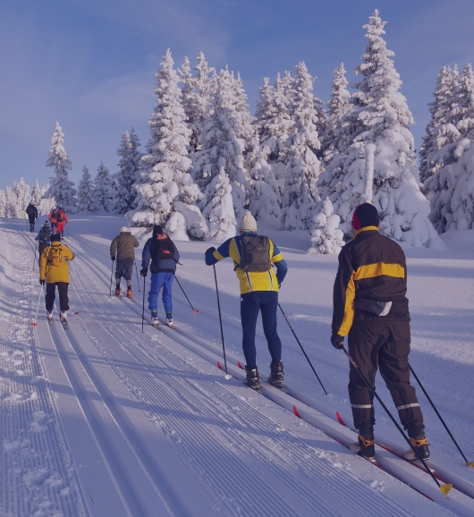 Full day group ski tour